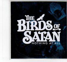 (FB73) The Birds Of Satan, Nothing At All - 2014 DJ CD