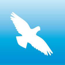 Warnvogel Aufkleber 10cm weiß Habicht Vogel Schreck Fenster Schutz Deko Folie