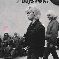 BASEMENT BEEHIVE: THE GIRL GROUP UNDERGROUND  2 CD NEU