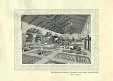1920 Italy 76 Cement Vats Wine Pressing Lecce District