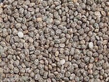 Lupine 1 kg Süßlupine GELB Saatgut Stickstoffdünger TOP Gründünger Futterpflanze
