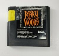 Risky Woods (Sega Genesis, 1992) Authentic - TESTED Cart only in VG condition