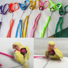 Harness And Leash For Birds Parrot Cockatiel Parakeet Conure Macaw Harness Leash