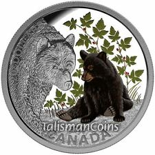 Canada 2015 Baby Animals 4 Black Bear Cub and Mother $20 Color Pure Silver Proof