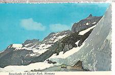 Snowbanks of  Glacier National Park  Montana  Chrome Postcard 267b