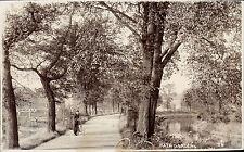 Bath Collectable Lincolnshire Postcards