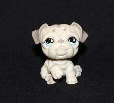 Littlest Pet Shop LPS Gray BULLDOG #508 Blue Teardrop Eyes Raindrop Head Grey