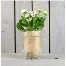 Glass Clear Flower Pot / Orchid Pot / Plant Container 15 cm
