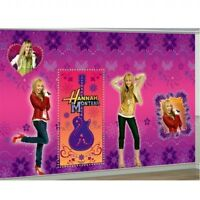 Party Decoration Hannah Montana Scene Setter Kit 2 x Room Rolls & 4 Cutouts HUGE