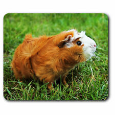 Computer Mouse Mat - Ginger Guinea Pig Rodent Office Gift #15574