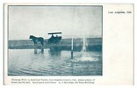 Flowing Well in Antelope Valley, Los Angeles County, CA Postcard *6E(2)7
