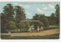 Wandsworth Common The Three Island Pond London 1904 Postcard