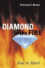 Diamond in the Fire : Soul to Spirit by Stephanie C. Barnes (2009, Paperback)