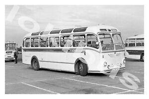 Bus Photograph UNITED COUNTIES OMNIBUS VVX 367 [463] '65