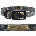 """1"""" Real Tree Camo D Ring Dog Collar with Custom Name Tag ID Plate"""