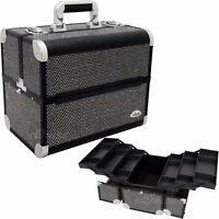 SUNRISE C3029 Professional Makeup Cosmetic Train Large Case Organizer Storage