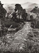 1934 Vintage 11x14 ~ ETHIOPIA ~Gojeb River Forest Mountain Landscape Photo Art