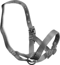 Black Nylon TetheringRearing  Halter To Suit Calves, Bucks, Rams And Deer 3342