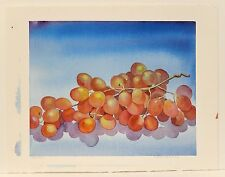 Watercolor Painting Fruit Still Life Grapes Signed Patty Bentley - Arches Paper