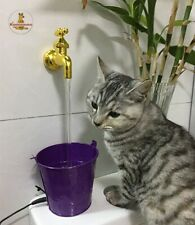 the pet fountain floating Cats and dogs drinking POTS and water fountains