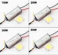 LED CHIP+DRIVER POWER 10W 20W 30W 50W 100W Bianco Alta Luminosità impermeabile