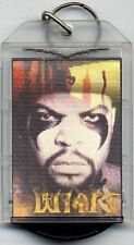 Ice Cube flashing key ring