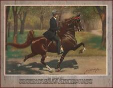 WING COMMANDER, CHAMPION FIVE GAITED SADDLE HORSE, George Ford Morris 1952