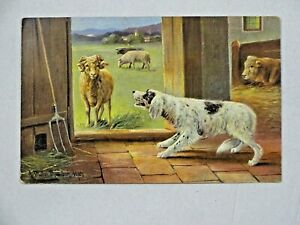 c1904 German UDB Signed Art Postcard Dog Sheep And Cow Germany Unposted