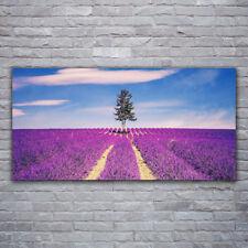 Tulup Acrylglasbilder Wandbilder Dekobild 120x60 Wiese Baum Landschaft