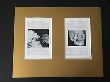 RARE MATTED READY TO FRAME: Double  Medical / Dental Plate Matted for Display