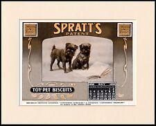 BRUSSELS GRIFFON LOVELY DOG FOOD CALENDAR ADVERT PRINT MOUNTED READY TO FRAME