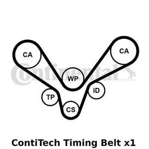 ContiTech Timing Belt - CT1015 ,Width: 30mm, 207 Teeth, Cam Belt - OE Quality