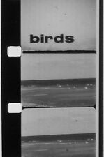 BIRDS 16MM FILM B & W SOUND NO REEL NO CAN ROLL OF FILM ONLY Z11