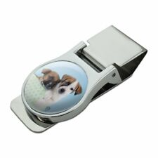 Jack Russell Terrier Puppies Dogs Gift Box Satin Chrome Plated Metal Money Clip