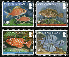 Ascension Is 2010 Reef Fish 4v set SG 1064-7 MNH