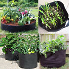 Non-woven Fabric Plant Grow Planter Container Bag Pouch Root Growing Pot 5 sizes