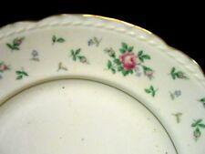 Princess China TRU-TONE Sweet Briar - 2 luncheon plates - near mint