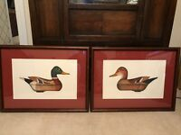 Arthur Nevin Mallard Drake and Mallard Hen Decoy Limited Edition Prints