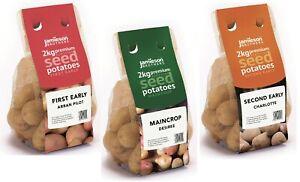 Jamieson Brothers® Seed Potatoes Premium Scottish Seed 2kg (Approx. 20-25 Tubers