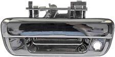 Tailgate Handle Dorman 91172