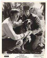 Photo de presse originale de Sam L intrepide , Dewey Martin, Walt Disney ( CBN )