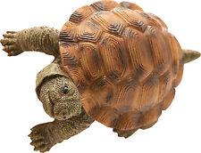 Animali in resina rampicanti Tartaruga cm 10x7 h6