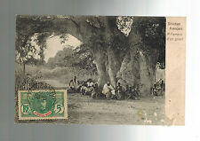 1908 Mali FS Real Picture postcard Cover AOF to France Giant Tree