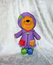 LEARN N' DRESS POOH Purple Raincoat Interactive Pooh Bear Plush Toy Fisher Price