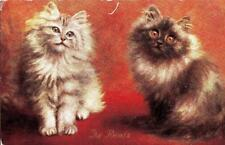 O88. Vintage Postcard. The Rivals. Cats, Kittens