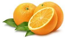 1 Pack 30 Citrus Orange Seeds Citrus sinensis Tangerine S034