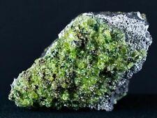 Natural Rough Emerald Peridot Crystals Specimen On Volcanic Rock Gila, AZ 6.5 OZ