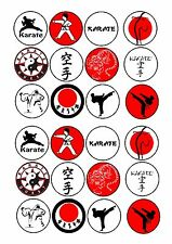 24 icing cake toppers decorations Karate Kirate Marshall Arts