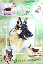 German Shepherd Dog Gift Present Wrap