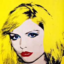 Andy Warhol Blondie Debbie Harry Canvas Print 17 x 17  #4786